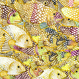 Gold Sea fish watercolor background illustration Royalty Free Stock Photography