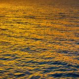 Gold sea water at sundown Royalty Free Stock Image