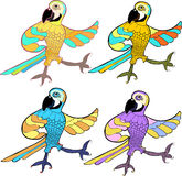 Gold set with dancing fun Caribbean parrot. vector illustration Stock Photo
