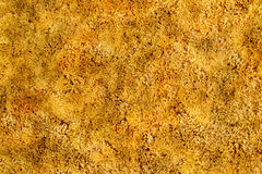 Gold Shag Carpet Stock Photography