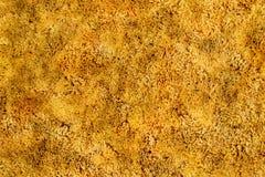 Gold Shag Carpet. Background of a golden shag carpet Stock Photography