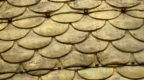 Gold Shingles. Gold plated shingles on the cathedral of Wawel Castle in Krakow, Poland Royalty Free Stock Photos