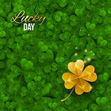 Gold shiny four leaf clover on green clover field. Vector illustration. Saint Patrick`s Day concept banner. Lucky and success symbol, leprechaun treasure Stock Photography