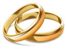 Gold shiny simple wedding rings isolated realistic illustration. Gold shiny simple wedding rings isolated realistic vector illustration on white background. Male Stock Photos