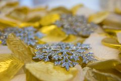 Gold and silver background of rose petals stock images