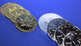 Gold and Silver Bullion Coins, Zoom-In. Two rows of Gold and Silver bullion coins, one-ounce Maple Leaf gold and silver bullion coins zoomed in on on a calm blue stock footage