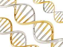 Gold and silver colored dna helix. 3D illustration Stock Photo