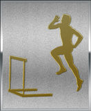 Gold on Silver Hurdles Sport Emblem Stock Images