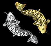 Gold and silver koii fish vector Royalty Free Stock Image