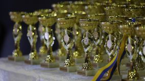 Gold and silver medals of the final game of the Ukrainian Rugby Cup. Bouquet from sports medals, Rugby champion cup.  stock video