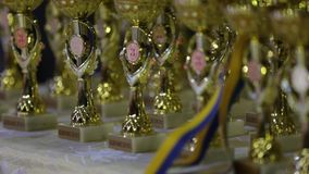 Gold and silver medals of the final game of the Ukrainian Rugby Cup. Bouquet from sports medals, Rugby champion cup.  stock video footage