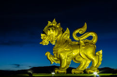 Gold singha in the garden. On midnight Stock Images