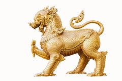 Gold singha on white background Stock Images