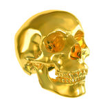 Gold skull. Stock Images