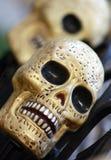 Gold skulls Stock Photography