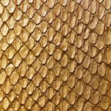 Gold snake skin. Fashion leather texture Royalty Free Stock Photo