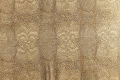 Gold snakeskin texture Royalty Free Stock Photos
