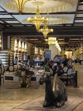 The Gold Souk at Dubai Mall in Dubai, UAE Royalty Free Stock Photo