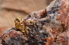 Gold specimen Stock Images