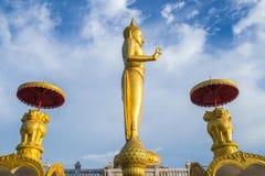 Gold Standing Buddha statue , Thailand. Gold Standing Buddha statue, Thailand Royalty Free Stock Photography