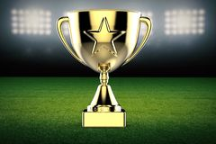 Gold star trophy on soccer field background. 3d rendering gold star trophy on soccer field background royalty free stock photos
