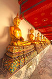 Gold statues of the Buddha abreast Royalty Free Stock Image