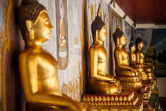 Gold statues in a row Stock Images