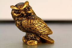 Gold statuette of an owl from the background, wallpaper stock photo