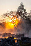 Gold steam. Morning is beautiful gold steam hot spring with sunlight at Jae Son National Park,Thailand Royalty Free Stock Images