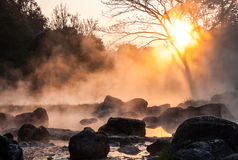 Gold steam. Morning is beautiful gold steam hot spring with sunlight at Jae Son National Park,Thailand Royalty Free Stock Photos