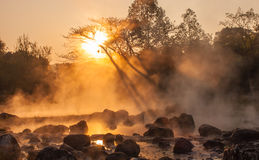 Gold steam. Morning is beautiful gold steam hot spring with sunlight at Jae Son National Park,Thailand Stock Images