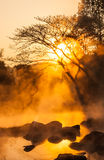Gold steam. Morning is beautiful gold steam hot spring with sunlight at Jae Son National Park,Thailand Royalty Free Stock Photo