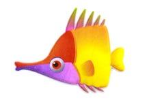 Gold stripe Maroon Clownfish - Premnas biaculeatus - Stock Image Stock Images