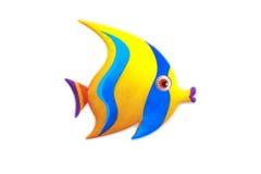 Gold stripe Maroon Clownfish - Premnas biaculeatus - Stock Image Royalty Free Stock Image