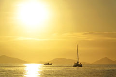 Gold sunset Stock Image