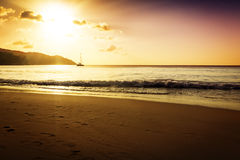 Gold sunset on the sand beach Royalty Free Stock Photos