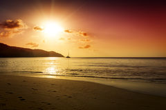 Gold sunset on the sand beach Royalty Free Stock Images