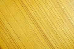 Gold Teak Wood (Tectona grandis L.f.) Texture. Royalty Free Stock Images