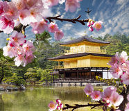 Gold temple japan Royalty Free Stock Photography