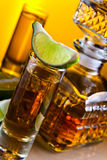 Gold tequila Royalty Free Stock Image