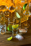 Gold tequila and lime Royalty Free Stock Photo