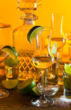 Gold tequila and lime Royalty Free Stock Photos