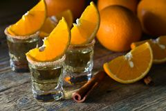 Gold tequila with orange and cinnamon . royalty free stock photo