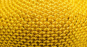 Gold texture pattern background Stock Photography
