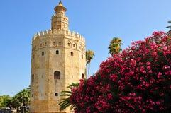 Gold Torre del Oro,塞维利亚,西班牙塔  免版税库存照片