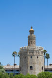 Gold tower within palmtrees Royalty Free Stock Image