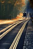 Gold tram tracks Royalty Free Stock Photography