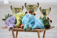 Gold trophy cups Royalty Free Stock Photos