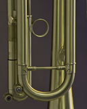 Gold Trumpet Detail Stock Images