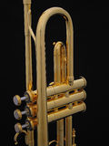 Gold Trumpet Standing Stock Image